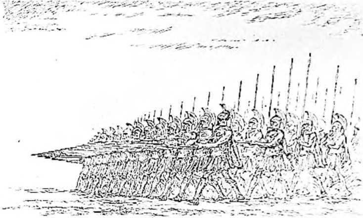 Древнегреческая фаланга. (Рисунок Н. Н. Вышеславцева).