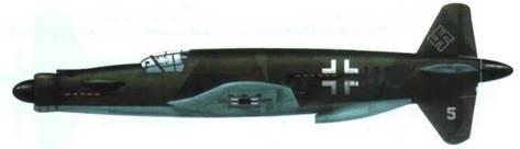Do 335V5, первый вооруженный прототип. Камуфляж RLM 81/82/65 (реконструкция).