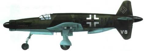 Do 335V8 в камуфляже RLM 70/71/65.