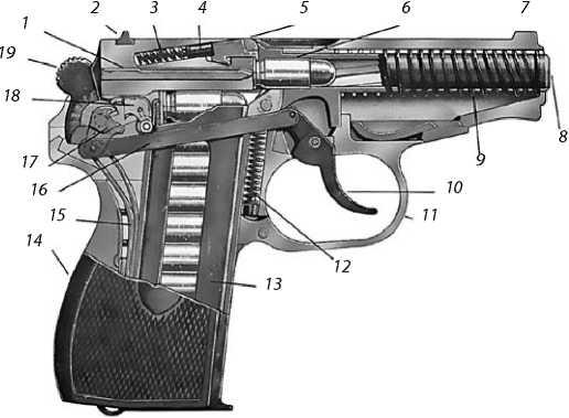 Разрез пистолета Макарова: 1 — ударник; 2 — целик; 3 — пружина гнетка <a href='https://arsenal-info.ru/b/book/1407702771/30' target='_self'>выбрасывателя</a>; 4 — гнеток; 5 — зуб выбрасывателя; 6 — патрон 9x18 мм ПМ; 7 — мушка; 8 — ствол; 9 — возвратная пружина; 10 — спусковой крючок; 11 — спусковая скоба; 12 — пружина спусковой скобы; 13 — магазин; 14 — рукоятка; 15 — боевая пружина; 16 — спусковая тяга; 17 — разобщитель; 18 — шептало; 19 — курок.