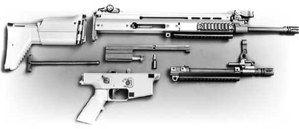 Штурмовая винтовка FN SCAR L со стандартным и коротким стволом.
