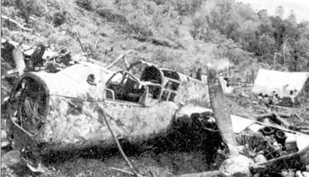 Этот потерпевший аварию истребитель P-61В был обнаружен в горах Индонезии специалистами Средне-Атлантического авиационного музея в 1989г. Остатки самолета успешно эвакуировали, с тех пор «Вдова» ожидает реставрации. Существуют планы восстановления самолета до летного состояния.