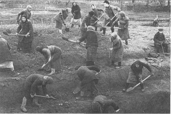 Три месяца продолжались земляные работы на рубеже обороны.