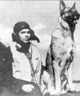 Флайт-сержант Джордж Анвин из 19 эскадрильи сфотографирован с любимой собакой по кличке Флэш. Оба сидят на плоскости крыла «Спитфайра» К9798 (один из первых самолетов этого типа, поступивших на вооружение эскадрильи в 1938г.), июнь 1940г.