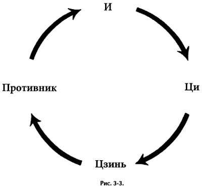 3-4. Накопление цзинь в позициях