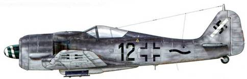 Fw 190А-8 из 111 (n)./ JG 54, Гроссенхайн, Германия, март 1945 г. Буква «п» означает «пеие» (новый) и напоминает о том, что эта Gruppe была переформирована из остатков II./ZG 26. Точное значение диагональной белой полосы, пересекающей Hackenkreuz (свастику) на хвостовом стабилизаторе, неизвестно (это может быть связано с упомянутым переформированием). Однако такая маркировка встречалась на целом ряде самолетов этого подразделения, пилоты которых получили в конце войны приказ прикрывать мосты через р. Одер.