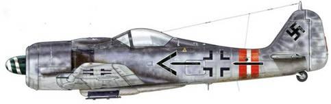 Fw 190A-9 из Stab JG 6. 1 января 1945 г. в ходе операции «Bodenplatte» пилотировавший этот самолет Oberstleutnant Йоханн Коглер был сбит и взят в плен в Фолькеле (Голландия).