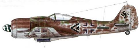 Fw 190А-8 из II./SG 2 «Иммельман», Кицинген, Германия, май 1945 г. Пилот – Major Карл Кеннель – Gruppenkommandeur II. Gruppe. Этот самолет, камуфляжная раскраска которого продолжается и за крестом, был окрашен классическими тремя тонами серого цвета (RLM 75, 75 и 76). К раскраске также были добавлены пятна фиолетово-коричневого цвета (RLM 81), которые, вероятно, распространялись по всему фюзеляжу и створкам ниш колес шасси.