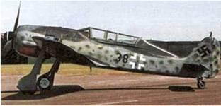 Некоторые экземпляры Fw 190 выпускались со второй кабиной пилота, которая устанавливалась на корпусе одноместного самолета. (AW)