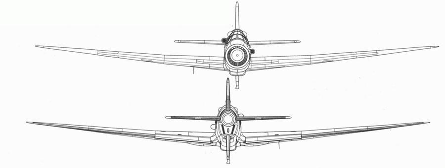 Do 335В-4, разведывательный вариант на базе Do 335В. Вид спереди и сзади. Проект, реконструкция.