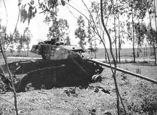 Еще долго после окончания войны на многострадальной земле Вьетнама можно было встретить сгоревшие остовы танков М41