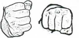 Рис. 4.2. Кулак - форма тигра