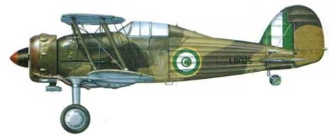 Бывший английский «Гладиатор Mk I», переданный египтянам и переделанный до стандарта Mk II. Самолет получил серийный номер L8025 и летал в составе 5-й египетской эскадрильи, Декалин, Египет, 1939 год.