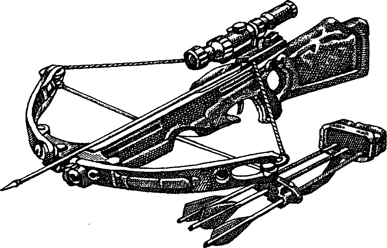 Современный арбалет