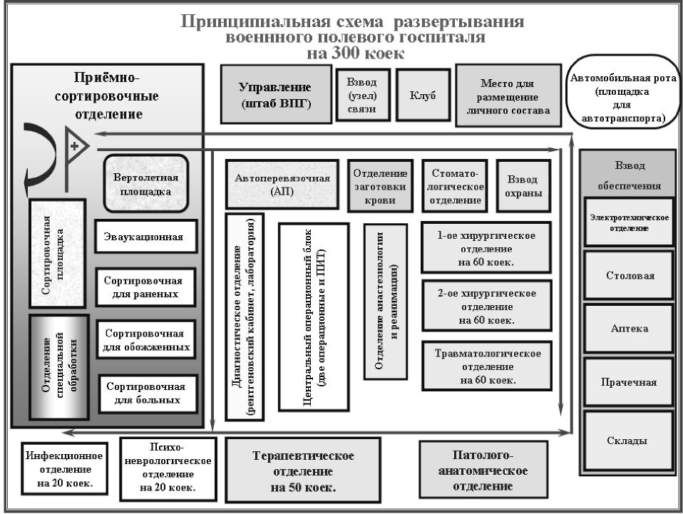 Организационно-штатная структура и организация работы военного полевого госпиталя