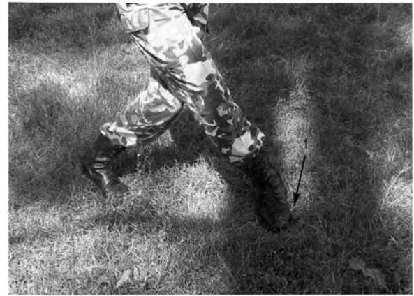 Фото 83. Разворот правого каблука (1) вперед при зашагивании правой ногой