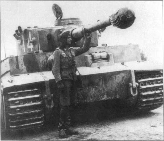 Бывший «Тигр» за номером «3», перекрашенный и получивший номер «14» белого цвета. Желтая краска Dunkel Gelb нанесена поверх серого фона. Советско-германский фронт, апрель-май 1943 года.