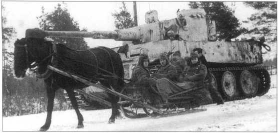 «Тигр» 502-го батальона под Ленинградом. Танк целиком окрашен в белый цвет. Советско-германский фронт, январь 1944 года.