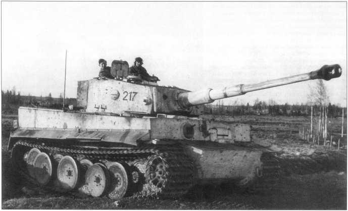 «Тигры» 502-го батальона в осенне-зимнем камуфляже. Номера нанесены черной краской. Советско-германский фронт, февраль 1944 года.
