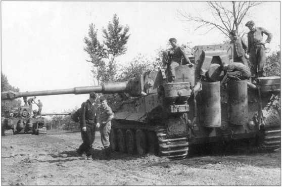 «Тигры» 503-го батальона в боях на Курской Дуге. Июль-август 1943 года.