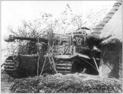«Тигры» 506-го батальона в боях на советско-германском фронте. Весна 1944 года.