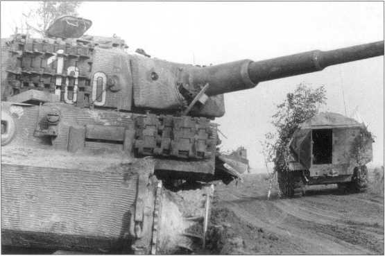 Танк «Тигр I» «100» из состава 1-й роты во время инспекции (февраль 1944 года) и после боя (июль 1944 года). По желтому Dunkel Gelb нанесены «размытые» коричневые пятна-полосы. Номер — белый с тонкой черной окантовкой.