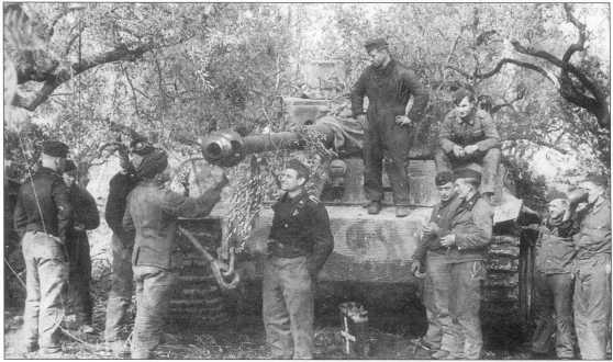 508-й тяжелый <a href='https://arsenal-info.ru/b/book/348132256/10' target='_self'>танковый батальон</a> (schwere Panzer-Abteilung 508)