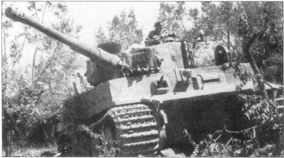 Pz.Kpfw.VI Ausf.E 3-й роты 508-го батальона, введенный из строя в районе деревни Ромола (Romola). 29 июня 1944 года.