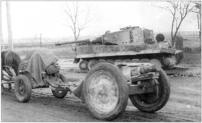 Pz.Kpfw.VI(H) номер «331» (нанесен белой краской) из состава 509-го батальона тяжелых танков. Машина окрашена коричневыми пятнами по темножелтому фону Dunkel-Gelb. На ящике для инвентаря в левом верхнем углу виден ромб белого цвета с вписанной в него буквой «G». Ноябрь 1943 года, район г. Киева.