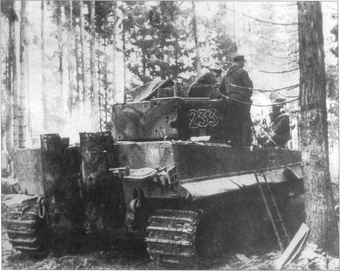 Pz.Kpfw.VI Ausf.E номер «233» (черный с белой окантовкой) в прибалтийских лесах. Машина окрашена в желтый Dunkel Gelb с камуфляжем из коричневых и зеленых пятен. Справа на корме — эмблема, нарисованная белой краской. Курляндия, ноябрь-декабрь 1944 года.