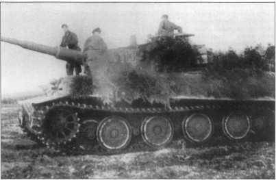 «Тигр» номер «113» (черный с белой окантовкой). Танк имеет трехцветный камуфляж. Базовый цвет — желтый Dunkel Gelb с нанесенными по нему оливково-зелеными и коричневыми пятнами. Октябрь 1944 года.