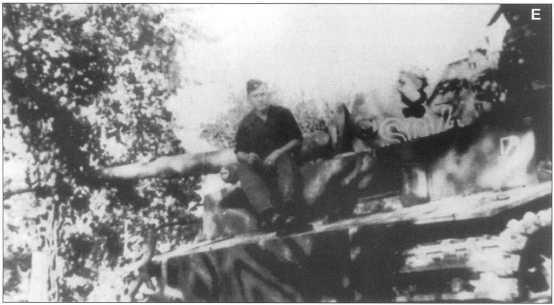 C-E. «Тигры» 101-го тяжелого танкового батальона СС на советско-германском фронте. Осень 1943 года.