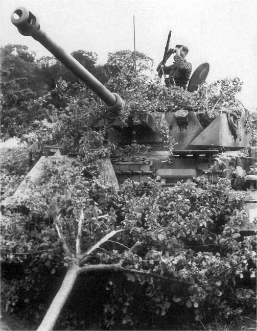 Командир замаскированного танка дивизии «Гитлерюгенд» ведет наблюдение за противником. Нормандия, окрестности г. Кан, июнь 1944 года.