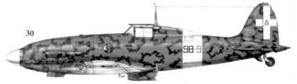 30. С. 202 серии IX серженте мажжиоре Вальтера Омиччиоли, 98-я эскадрилья 7 Gruppo 54 Stormo, Казилли, апрель 1943г.