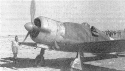 Истребители G.50 впервые появились в Ливии весной 1941г., машины принадлежали 20-й группе, которая в тот период считалась отдельной. С конца 1940г. на всех итальянских истребителях (а также на некоторых бомбардировщиках и разведчиков), действующих в Северной Африке, носовые части фюзеляжа стали красить в ярко-желтый цвет. С октября 1941г. эту окраску официально отменили — желтые носы имели право «носить» только самолеты, действующие на восточном фронте.