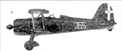 1. CR.42 командира 365-й эскадрильи капитана Джоджо Граффера, 150 Gruppo, 53 Stormo, Касилли. Лето 1940г.