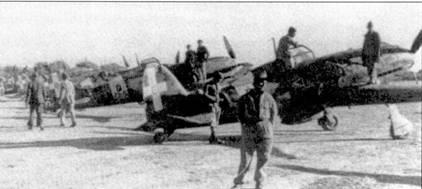 Истребители С.202 из 3 и 4 Stormo, авиабаза Кастельбенито, начало 1943г. На переднем плане — самолет командира 97-й эскадрильи к а питано Фернандо Мальвези; Мальвези сбил за войну десять самолетов противника.