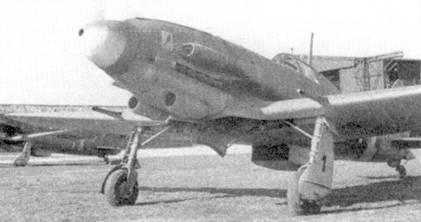 Одним из основных типов истребителей ANR стал С. 205 У. На снимке — вооруженный пушкой истребитель третьей производственной серии из 1-й эскадрильи 1 Gruppo Caccia, самолет принадлежал командиру группы капитано Адриано Висконти.