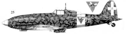 25. С.202 серии VII MM9024 командира 23 Gruppo 3 Stormo майора Луиджи Филиппы, Тунис, январь 1943г.