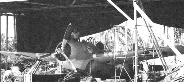 F4F-3P И F4F-3AP