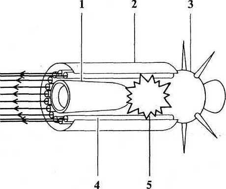 Схема рентгеновского лазера: 1. Следящий телескоп. 2. Кожух. 3. Наведение и двигательная установка. 4. Лазерные стержни. 5. Ядерная бомба.