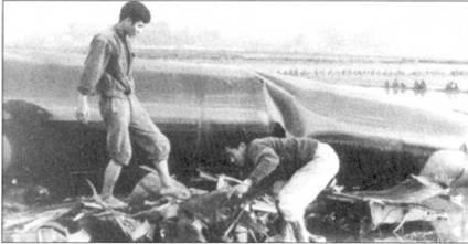 Жители предместья города Хоабинь осматривают обломки сбитого Фам Туаном стратегического бомбардировщика B-52D, 2S декабря 1972г. ВВС CUIA считают, что «Стритокреность» сбила зенитная ракета.
