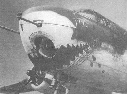 Нос самолета с предыдущего снимка крупным планом. Видно расположение пушки и пулеметов, а также акулья пасть, Орландо (Флорида).