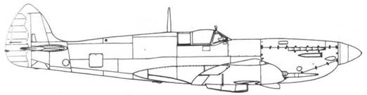 Spitfire VII поздних серий