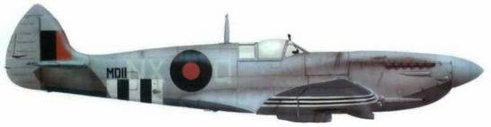 «Спитфайр VII» (MDIII/NX@Q). 131-я эскадрилья, Фристон. осень 1944 года. Окраска и обозначения типичные для высотных истребителей. Обратите внимание на нестандартные, узкие «полосы вторжения», обычные для высотных самолетов.
