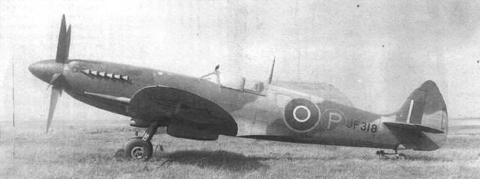 JF318 был одним из пяти «Спитфайров VIII», переделанных в прототипы MkXIV Самолеты оснастили двигателями «Гриффон» с двухступенчатым наддувом. Снимок сделан весной 1943 года, самолет по-прежнему имеет хвостовое оперение от Mk.VlII.