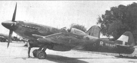 На вертикальном оперении и плоскостях крыла «Спитфайра» FR Mk XIV (NH927/R) нанесены белые полосы — идентификационные знаки тихоокеанского театра военных действий. В конце войны «тихоокеанские» «Спитфайры» редко несли идентификационные литеры эскадрилий.