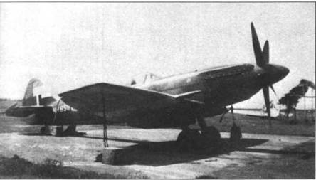 В ожидании шторма — к плоскостям крыла и хвосту фюзеляжа «Спитфайра» Мк XIV (NH858) привязаны бетонные блоки, Тихий океан.