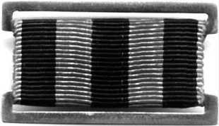 Нагрудный знак «Морская Гвардия».