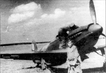 Поляки получили двадцать Як-3, которые использовались, главным образом, в учебных целях. Пять самолетов находилось в составе 1-го авиаполка до сентября 1945 года. Польские эмблемы нанесены поверх стандартного серо-зелено-серого камуфляжа.